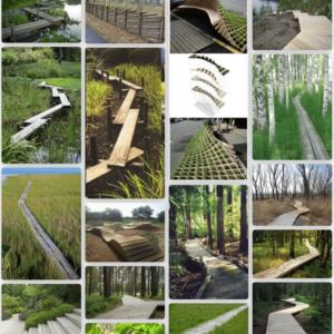 Parkmiljö och Växter