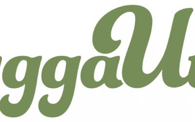 Presentation vid ByggaUte Webinarium