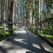 Järvzoo i Ljusdal - unik parkmiljö i naturskönt skogslandskap